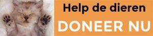 Help de Dieren doneer nu